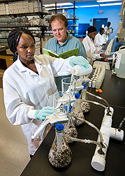 ARS chemist (center) works with UMES student (left) and other UMES students to measure arsenic levels in water samples from Princess Anne, Maryland: Click here for full photo caption.