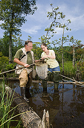 USDA Forest Service ecologist Megan Lang and herpetologist Joseph Mitchell (Mitchell Ecological Research Services, LLC) carefully search a wetland debris sample for amphibians: Click here for full photo caption.