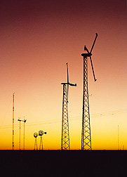 Wind turbines for electricity production: Click here for photo caption.