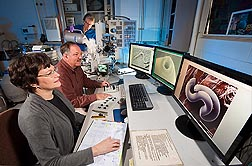 Plant pathologist Lynn Carta (left) and Gary Bauchan (center), director of the Electron and Confocal Microscopy Unit, use a low-temperature scanning electron microscope to view nematode anatomical structures useful for species identification. In the background, support scientist Charlie Murphy adds liquid nitrogen: Click here for full photo caption.