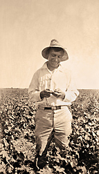 The USDA Pink Bollworm Project Photograph Collection includes this 1917 image of USDA inspector Ivan Shiller, who found the first pink bollworm in the United States in Herne, Texas: Click here for photo caption.