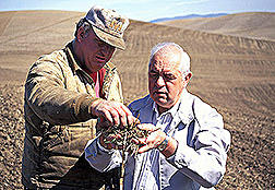 Soil scientist and a farmer examine crop residues. Click here for full photo caption.