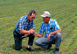 Larry Heatherly (left) with farm consultant: Link to photo information