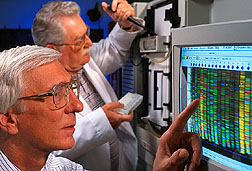 Cletus Kurtzman inspects a yeast DNA sequence from an automated DNA sequencer. Click here for full photo caption.