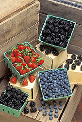 Strawberries, blackberries, and blueberries: Click here for full photo caption.