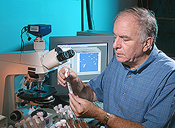 Photo: A microbiologist examines a fungal culture. Link to photo information