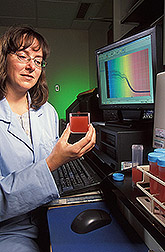 Plant geneticist measures lycopene content of puree: Click here for full photo caption.
