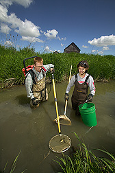 Ecologist and technician use a backpack electrofisher to assess fish communities: Click here for full photo caption.