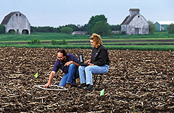 Agronomist Doug Buhler and Iowa State University student Amy Beatty count emerging weeds. Click here for full photo caption.