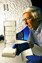 Photo: Microbiologist examining preserved yeast specimens. Link to photo information