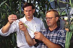 Geneticist Bryan Kindiger and Russian cytogeneticist Victor Sokolov