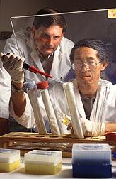 Geneticist Bryan Kindigerand geneticist Yong Li