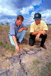 Agricultural engineers inspect soil cracks caused by severe drought.