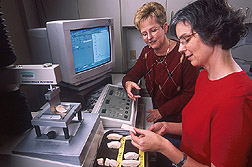 Photo: Food technologists Brenda Lyon, left, and Elizabeth Savage discuss fiber orientation of a chicken breast sample. Link to photo information