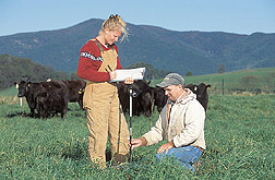 Photo: A technician and farm manager record plate meter measurements, which are used to estimate forage yields in cow-calf grazing paddocks. Link to photo information