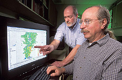 Agronomist and hydrologist look at weed distribution patterns: Click here for full photo caption.
