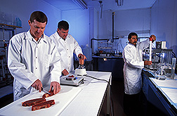 Two food technologists prepare muscle for calpain extraction as physiologist Mohammad Koohmaraie separates calpain and calpastatin from a meat extract:  Link to photo information
