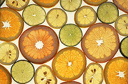 Citrus slices: Click here for photo caption.