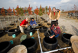 Extension horticulturist, agricultural engineer, plant pathologist, and technician collect water samples from a pot-in-pot tree-production research site: Click here for full photo caption.