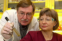 Photo: Microbiologists Mark Rasmussen and Sharon Franklin examine a culture of protozoa.
