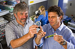 Plant pathologist (left) and visiting geneticist discuss cryopreservation techniques for vegetatively propagated crops: Click here for full photo caption.