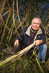 Sugarcane specialist holds a sugarcane stalk showing signs of deterioration: Click here for full photo caption.