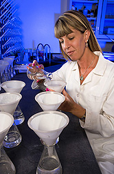 Technician prepares groundwater samples for analysis: Click here for full photo caption.