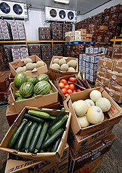 Photo: Boxes of fruits and vegetables. Link to photo information