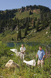 Entomologists sample a mountain meadow for wild bees at Tony Grove Lake in northern Utah: Click here for full photo caption.