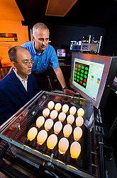 Electrical engineer (left) and agricultural engineer evaluate image results from the microcrack detection system: Click here for full photo caption.