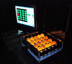A specialized camera captures images of illuminated eggs inside this see-through case: Click here for full photo caption.