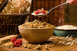 ARS-funded research at the Human Nutrition Research Center on Aging at Tufts University shows potential health benefits of oat consumption beyond the prevention of coronary heart disease through lowering blood cholesterol: Click here for photo caption.