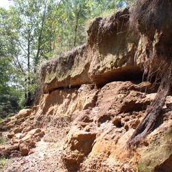 An example of seepage erosion from a section of Goodwin Creek in Mississippi: Click here for photo caption.