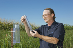 Microbiologist reads a rain gauge in a study to determine switchgrass water-use efficiency: Click here for full photo caption.