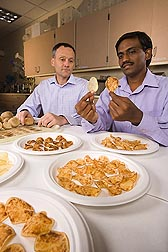 Research associates Godfrey Miles, ARS, (left) and Venkatesan Sengoda, Washington State University, evaluate symptoms in fried chips made from potatoes infected with zebra chip: Click here for photo caption.