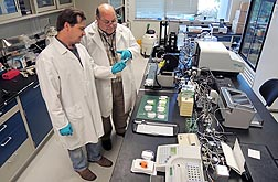 In Albany, California, molecular biologist Robert Hnasko (left) and biologist Larry Stanker examine newly produced lateral flow devices that can identify botulinum toxin serotypes: Click here for photo caption.