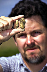 Tom Isleib compares a Mexican hairy peanut (left) to the standard Virginia peanut