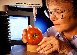 Measuring tomato fruit quality