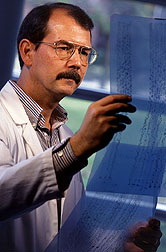 Geneticist Randy Shoemaker evaluates DNA sequencing reactions. Click here for full photo caption.
