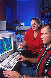 Geneticist and molecular biologist review data on computer: Click here for full photo caption.