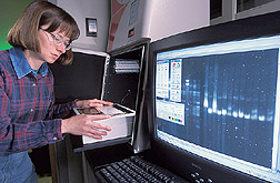 Geneticist uses a digital image analyzer: Click here for full photo caption.