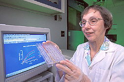 Chemist examines the results of an enzyme assay: Click here for full photo caption.