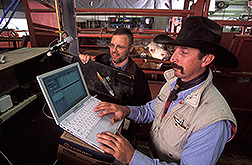 Chemist and cattle wrangler record data of a heifer: Click here for full photo caption.