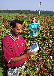 Agricultural engineer and technician use a capacitance probe to measure soil water: Click here for full photo caption.