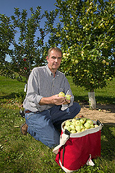 Farm manager from Geneva, New York displays the quality fruit of this genotype that has potential use by breeders: Click here for full photo caption.