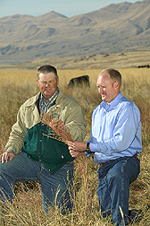 Rancher Bob Adams and ARS scientist Blair Waldron discuss nutritional value of forage kochia. Link to photo information