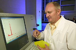 Geneticist analyzes the DNA content of new types of forage kochia from Kazakhstan and Uzbekistan: Click here for full photo caption.