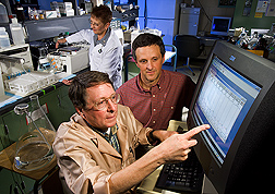 In the laboratory, Pat Nuss prepares samples while John Klindt and Gary Rohrer evaluate data displayed on computer screen. Link to photo information
