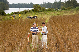 Soil scientist (front left) and biologist examine a soil sample collected from a row crop area adjacent to the lake. In the background, technician operates a survey-grade GPS system to document sampling locations in the buffer area: Click here for full photo caption.