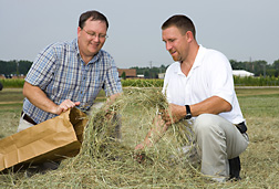 Photo: ARS agricultural engineers Kenneth Stone (left) and Joseph Millen are collecting bermudagrass hay samples for scientific analysis. Link to photo information